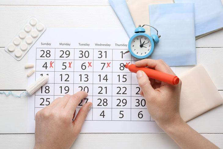 Chu kỳ kinh nguyệt bình thường có độ dài 22-35 ngày
